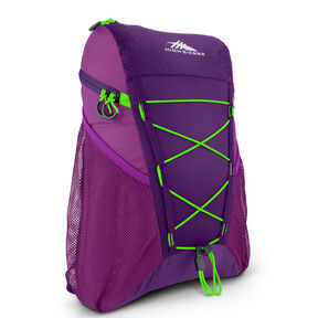 High Sierra Pack-N-Go 2 18L Sport Backpack in the color Eggplant/Berry Blast/Lime.
